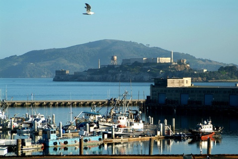 small-alcatraz.jpg